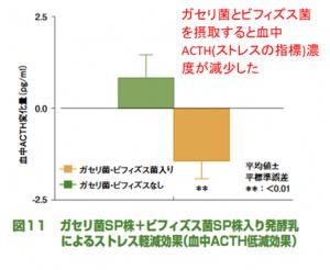 ガセリ菌とビフィズス菌でACTH濃度が減少
